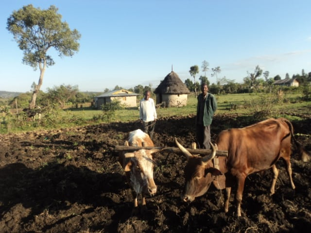Children usually become runners or farmers in Rift Valley, Kenya.